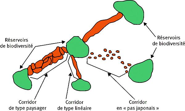 CRCE - Le schéma régional de cohérence écologique  dans Ce blog - son auteur reservoirs-biodiversite-et-corridors-ecologiques