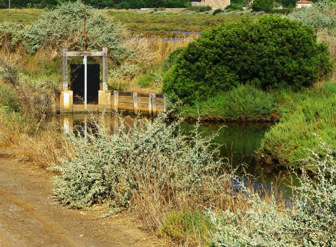 marais salants hyères zone humide